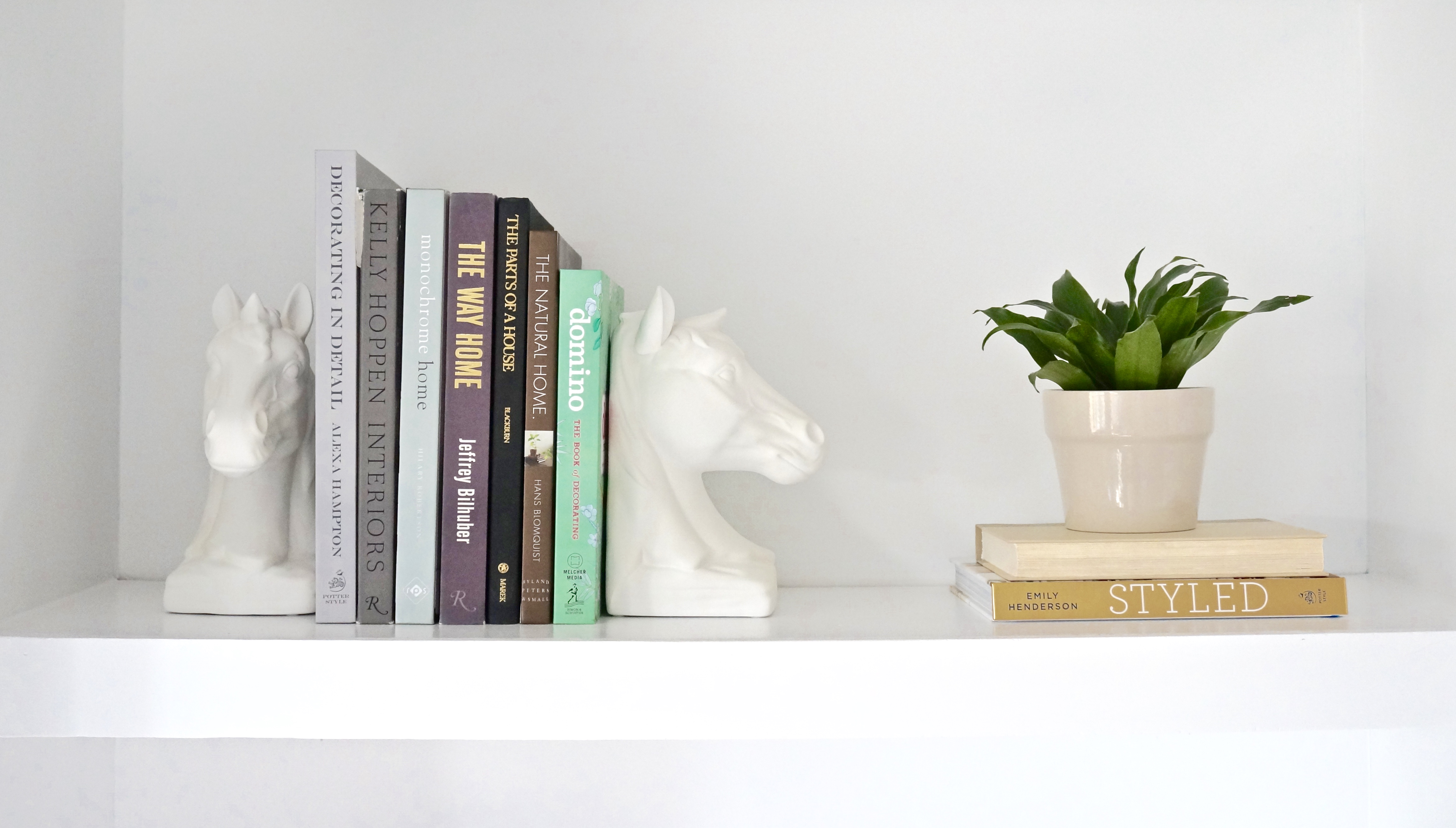 Summer Shelf Close Up Left For Books and Plant